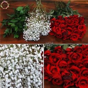37 CÀNH HOA LẺ: hoa hồng, lá chanh, baby...