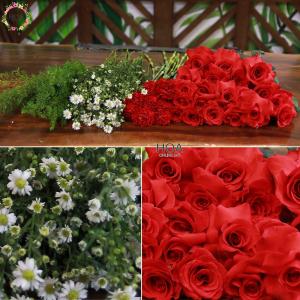 46 CÀNH HOA LẺ: hoa hồng, cẩm chướng, đuôi chồn...