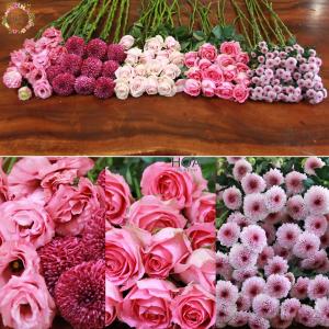 56 CÀNH HOA LẺ: hoa hồng, cúc calimero...