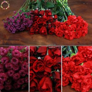 36 CÀNH HOA LẺ: hoa hồng, cẩm chướng, cúc calimero