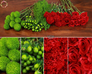 50 CÀNH HOA LẺ: hoa hồng, cẩm chướng, đuôi chồn...