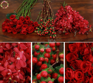 40 CÀNH HOA LẺ: hoa hồng, lan mokara, chuỗi ngọc..