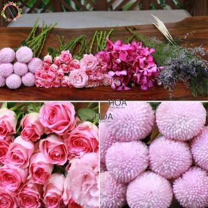 44 CÀNH HOA LẺ: hoa hồng, lan mokara, bingbong...