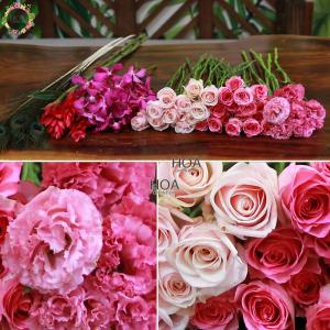 46 CÀNH HOA LẺ: hoa hồng, lan mokara, lông công...