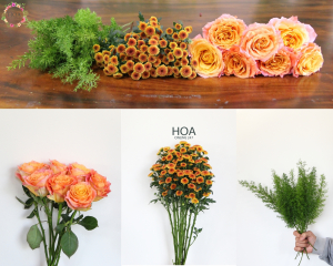 27 CÀNH HOA LẺ: hoa hồng Ecuador, calimero,...