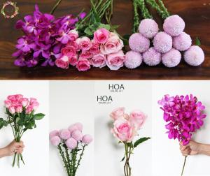 30 CÀNH HOA LẺ: hoa hồng Ecuador, bingbong...