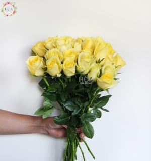 HOA LẺ: 40 hoa hồng Premium